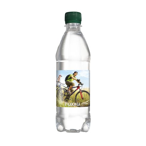 Pure Water 500 ml bouchon vis
