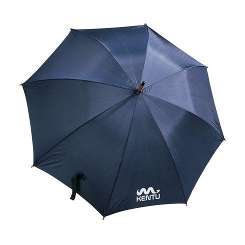 Galaxy parapluie