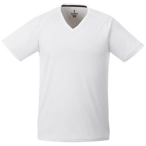 Amery short sleeve men's cool fit v-neck t-shirt