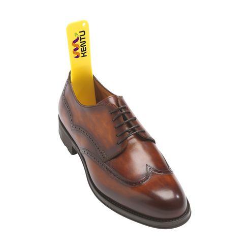 Shoe Assist schoenlepel
